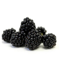 Are Blackberries An Anti-Cancer Food?